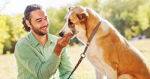 ¿Tienes un perro o un perrhijo?
