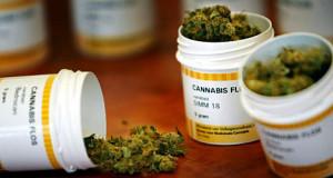Continúa registro de pacientes para el programa de Cannabis Medicinal
