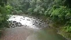 Vigilante de Recursos Naturales salva Familia completa de ser arrastrada por rio en el Yunque (Vea el Video)