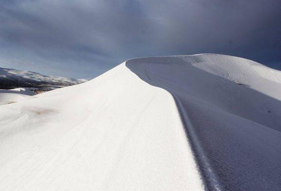 Nieve cubre el desierto más cálido del mundo por tercera vez en los últimos 40 años