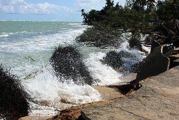 Investigación de la UPR-Río Piedras identifica mayor erosión en las playas luego del huracán María