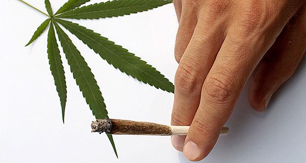 Salud advierte sobre posibles violaciones por eventos que promueven el cannabis recreacional
